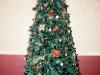 christmas-gala-2011-05